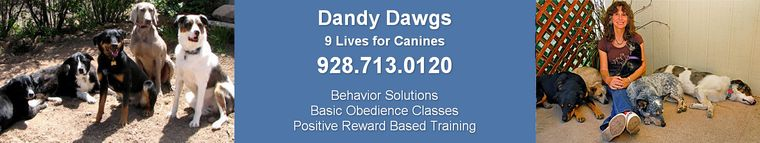 Dandy Dawgs, Prescott, Arizona