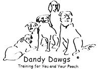 Dog Training Classes Prescott, AZ