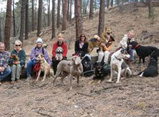 Tails To Trails - Dog Training Prescott